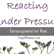 Reacting Under Pressure : Encouragement for Mom