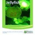 jellyfish homeschool giveaway