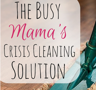 Frugal Mommas - Cleaning Solution