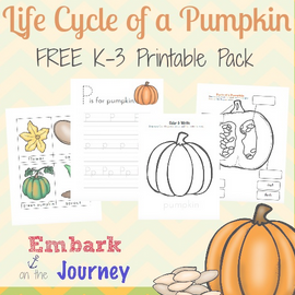 Life Cycle of a Pumpkin - Embark on the Journey