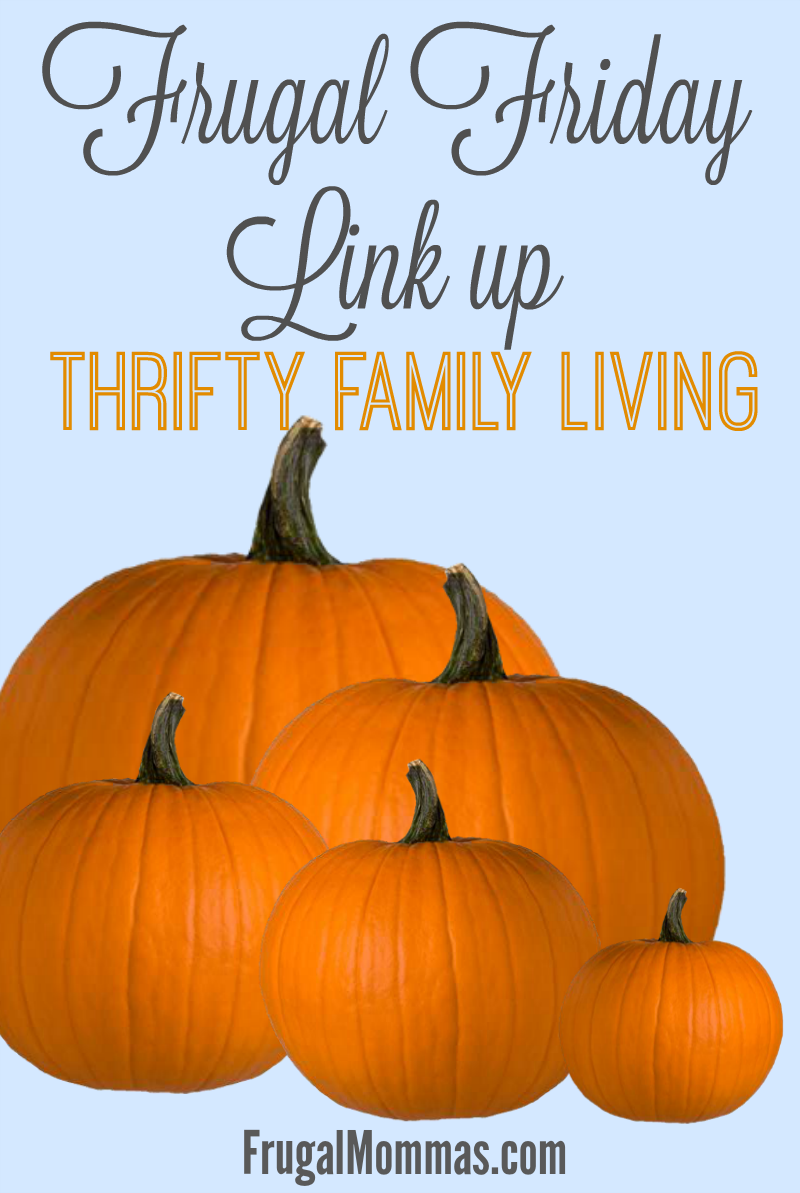 frugal friday - thrifty family