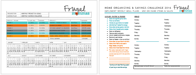 Frugal Organizing and Saving Challenge