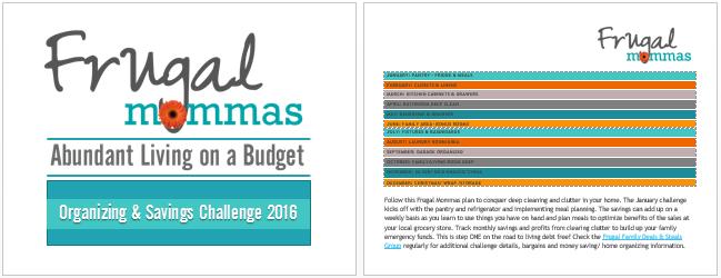 Frugal Organizing and Saving Challenge