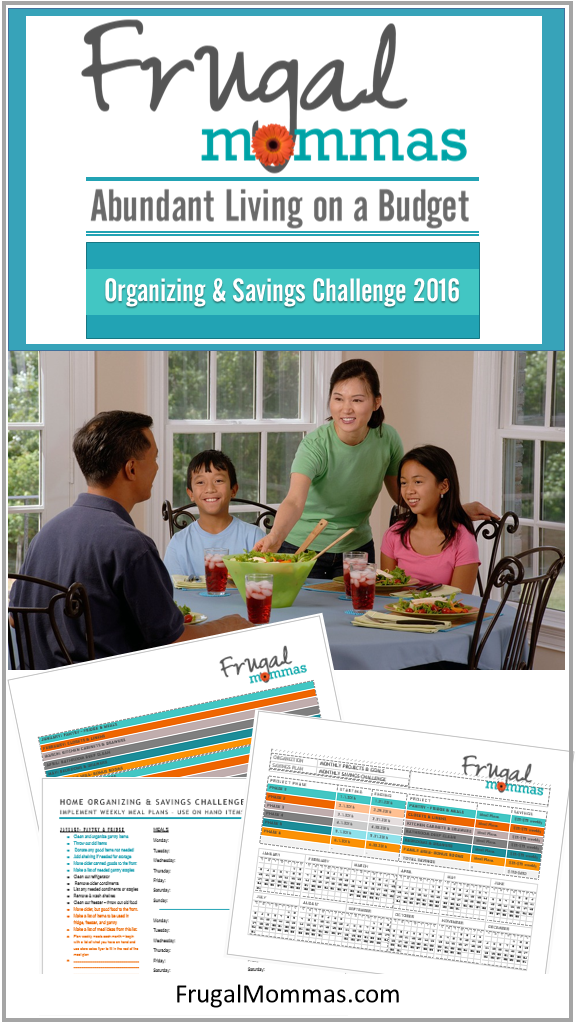 Frugal Organizing and Saving Challenge with Planner