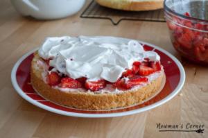 Home and Garden - Strawberry Tiramisu