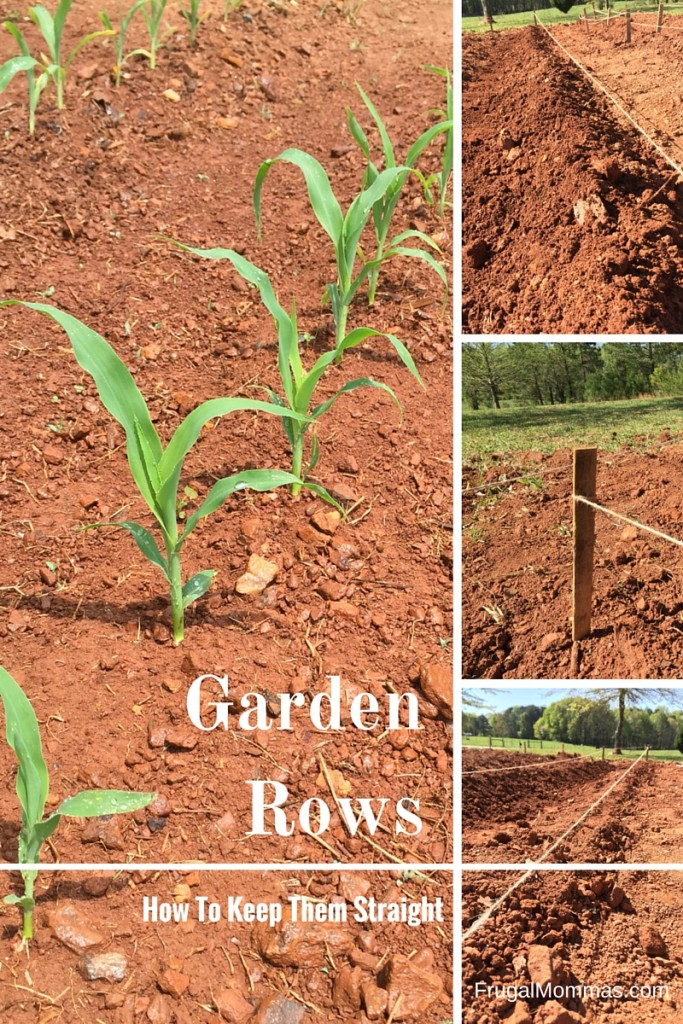 How To Get Straight Garden Rows