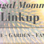 Frugal Mommas Link up 31 – Friday Home Garden Recipe Share