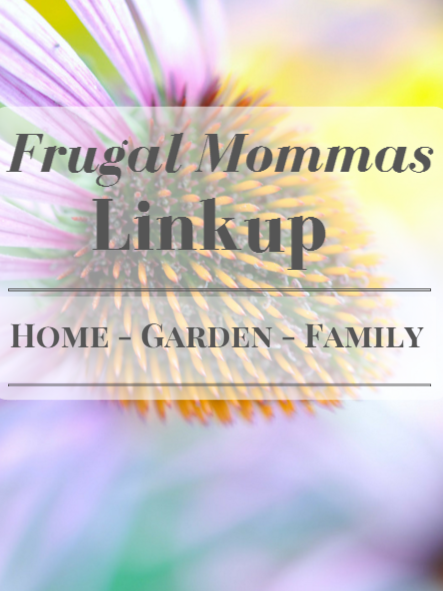 Frugal Mommas Link up 31