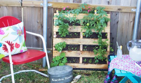 Friday Linkup - DIY Gardening