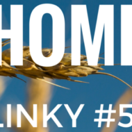 Frugal Mommas Friday Home Linky 51