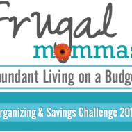 Organizing and Savings Challenge: Save $1300 – $3900+ Yearly