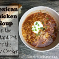 Instant Pot Recipe – Mexican Chicken Soup