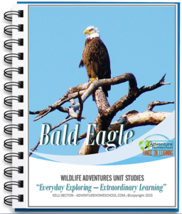 Bald Eagle Unit Study