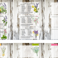 Essential Oils Recipe Cards and New Blends Freebie