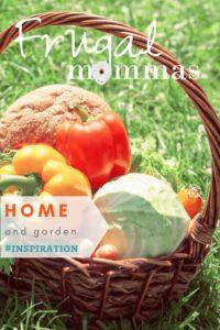 home garden inspiration 98